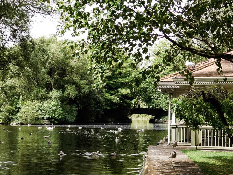 Pond in St Stephen's Green, Dublin